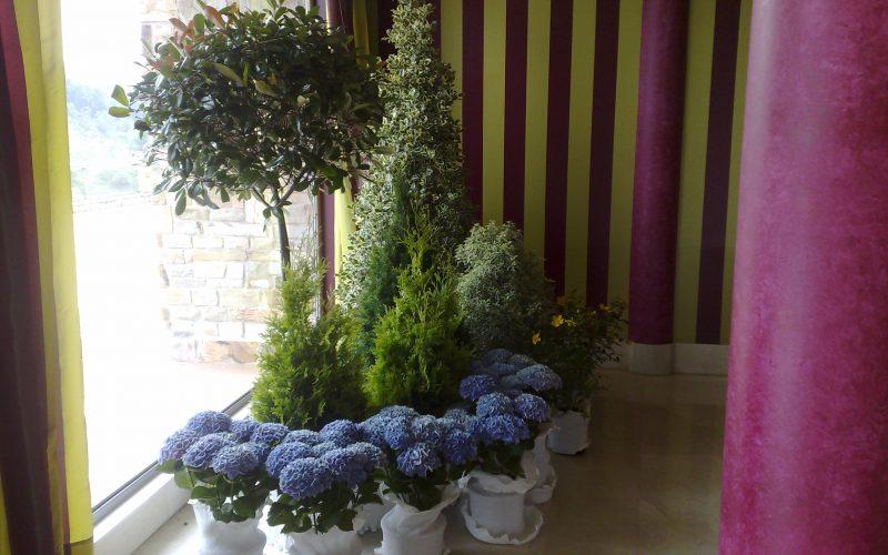 Arreglos florales en Cantabria