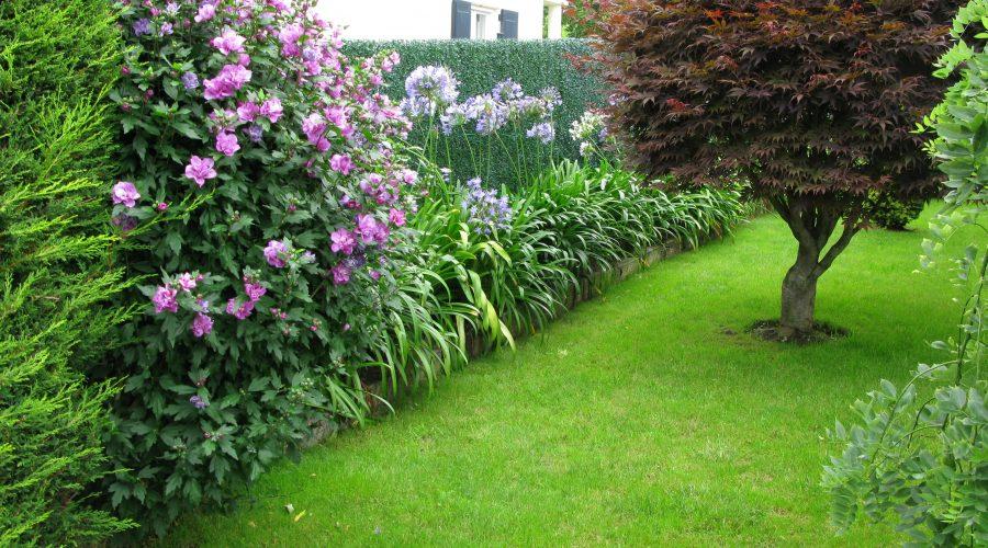 Mantenimiento de jardines en cantabria jardiner a diego for Trabajo de mantenimiento de jardines