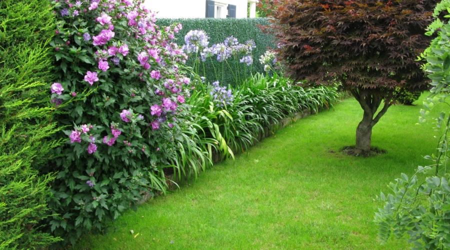 Mantenimiento de jardines en Cantabria