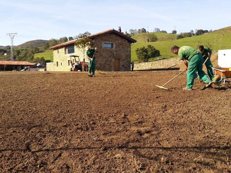 Colocación de césped en Cantabria
