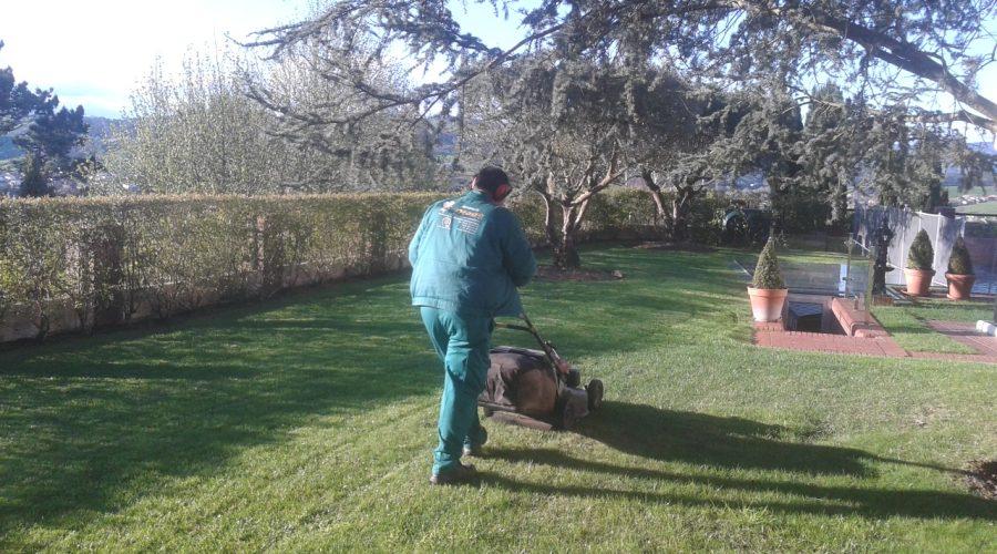 Siega y desbroce de parcelas en Cantabria
